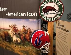 Exhibit in Billings shows the history of bison