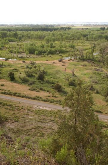 Out and about: Wild state land close to Billings