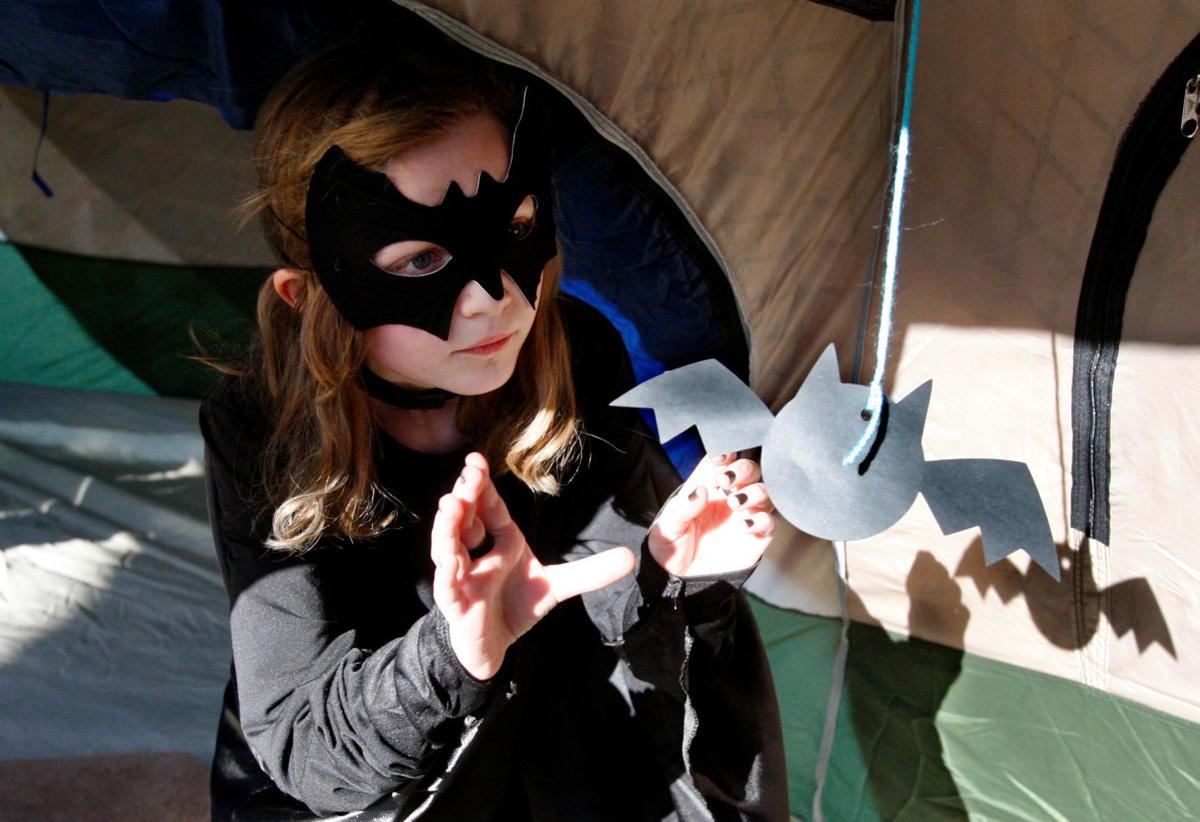 Go to Bat for Bats