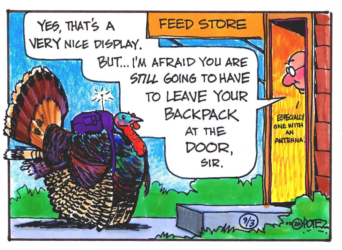 Wild turkey backpacks
