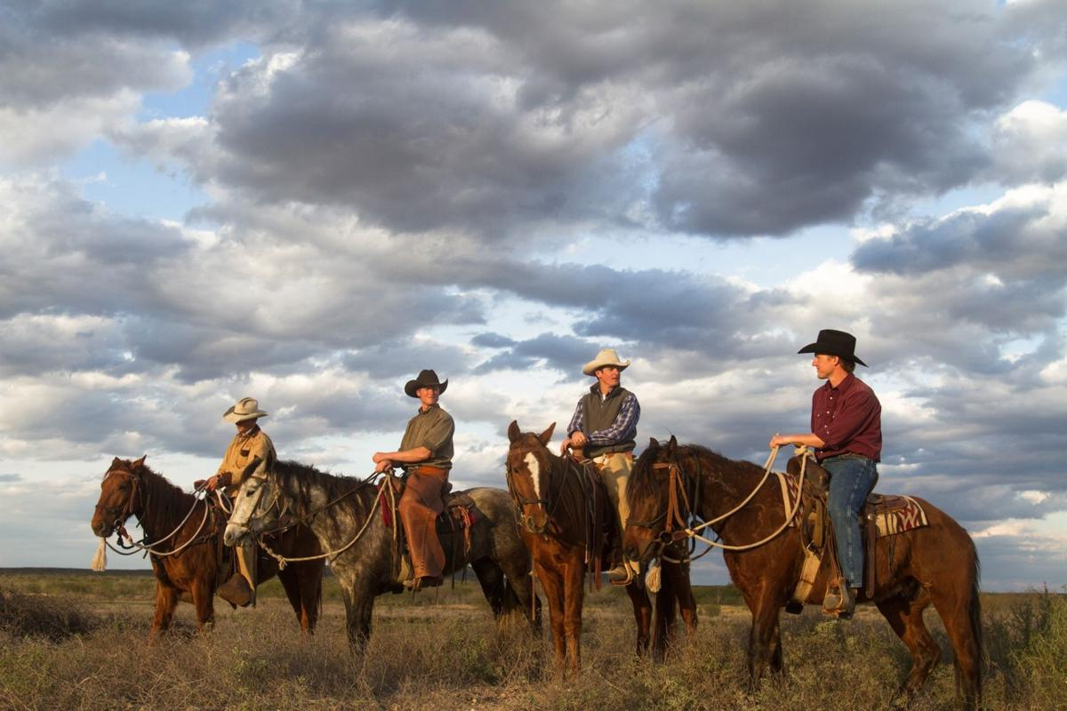 'Unbranded' opens Friday at Art House Cinema & Pub ...