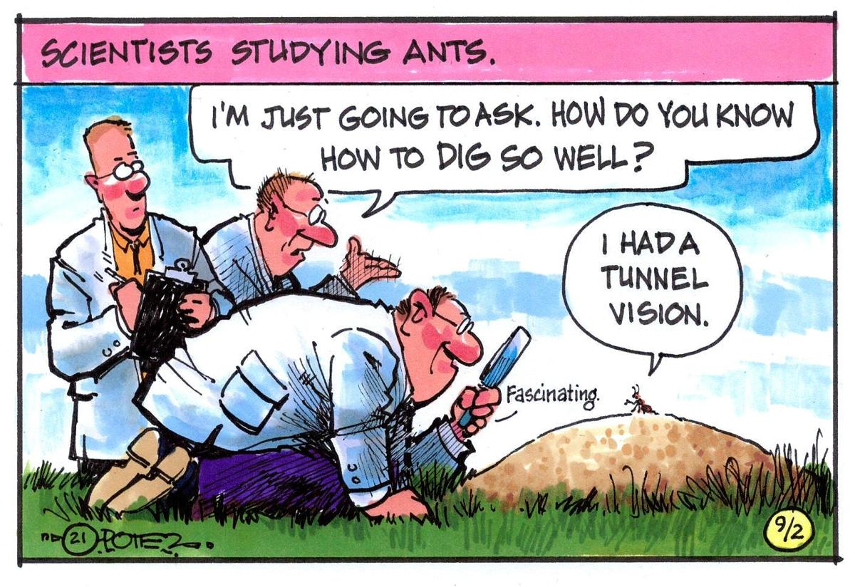 Ant tunnels