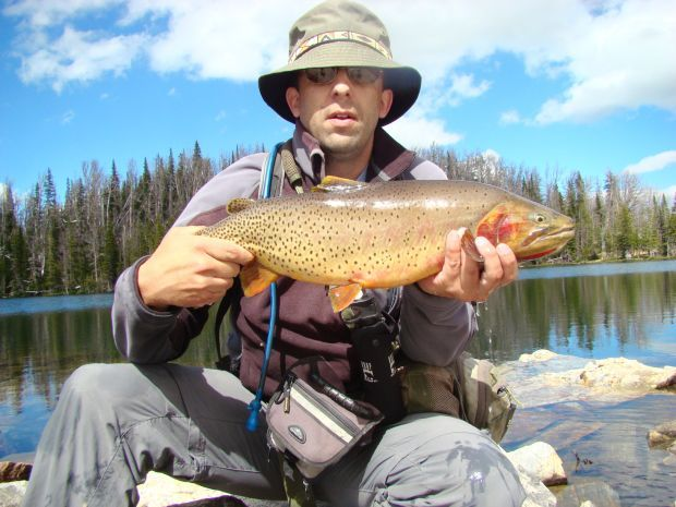Outdoors High Country Angling