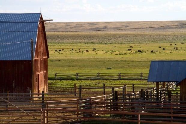 The Espenscheid ranch