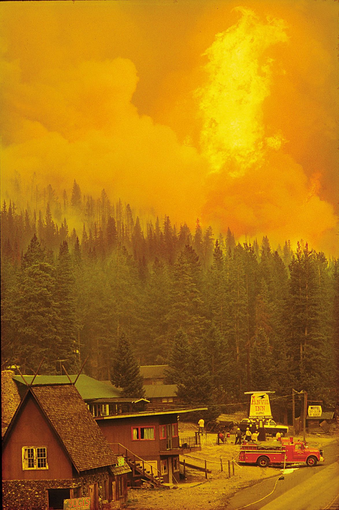 the great yellowstone fires of 1988 The last great yellowstone fires were in the 1600s or 1700s in an ecological sense, we are told, the fires are good because they allow new growth: new meadows will.