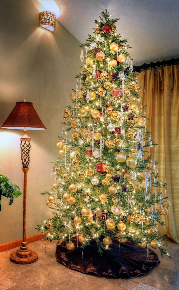 Water Your Christmas Tree