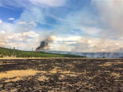 Progress made in fighting Yellowstone fire