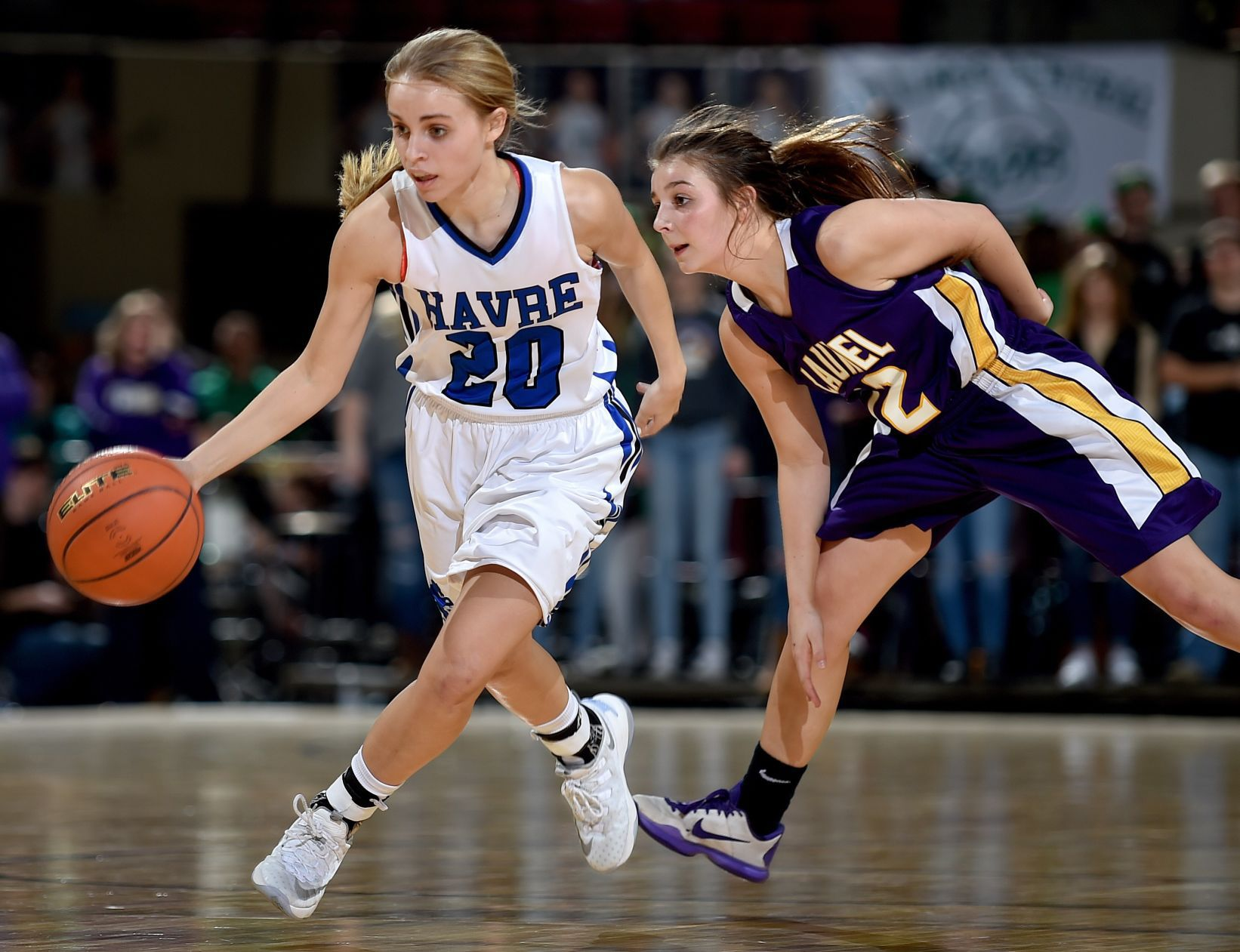 basketball coach cover letter%0A Early morning time to rise and shine for Glendive girls   Girls Basketball    billingsgazette com