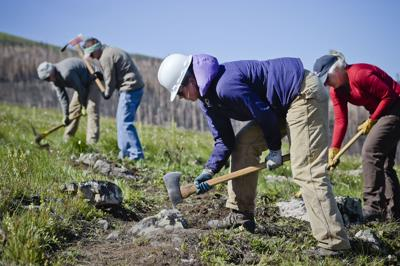 Volunteers works on a section of the Continental Divide Trail