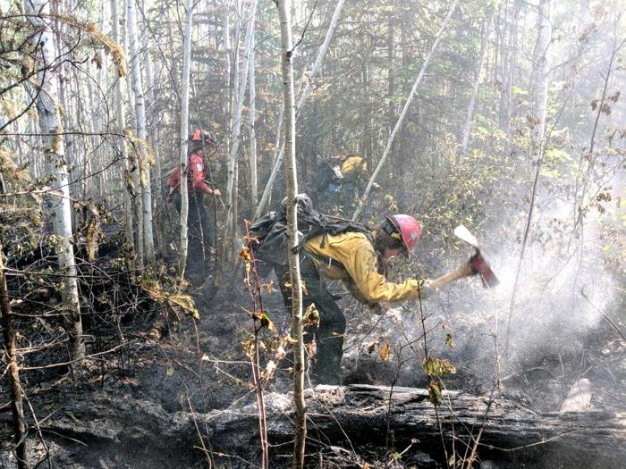 Bitterroot Hotshots face down unusual fire behavior and bears in Alberta