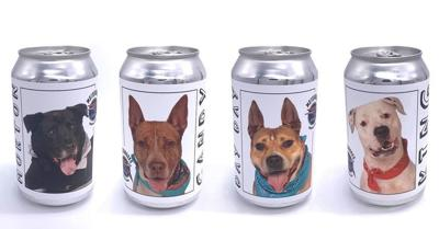 Dogs on beer cans