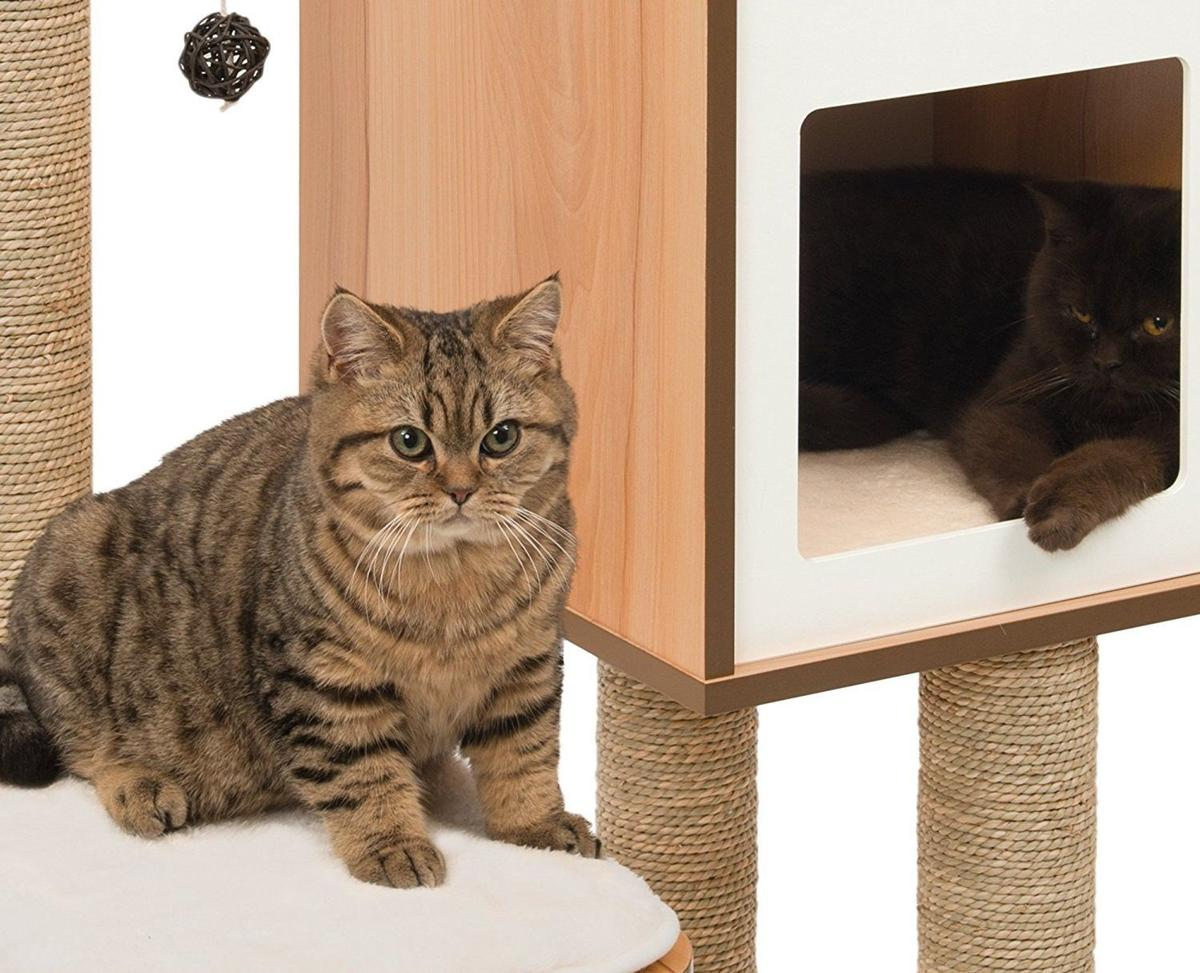 3 cool cat trees that won t cramp your style home and for Cool cat perches