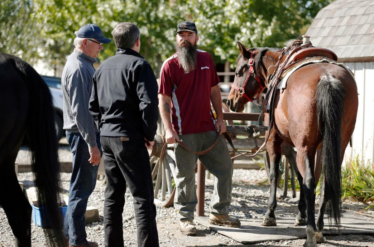 Horses Spirits Healing