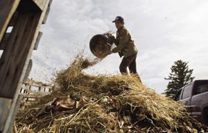 UW students lead charge for large-scale composting