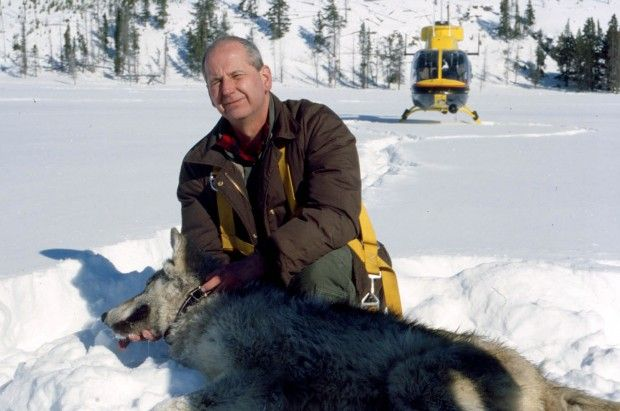 Ed Bangs in Yellowstone Park in 2002