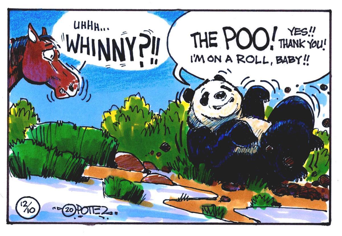 Pandas and poo