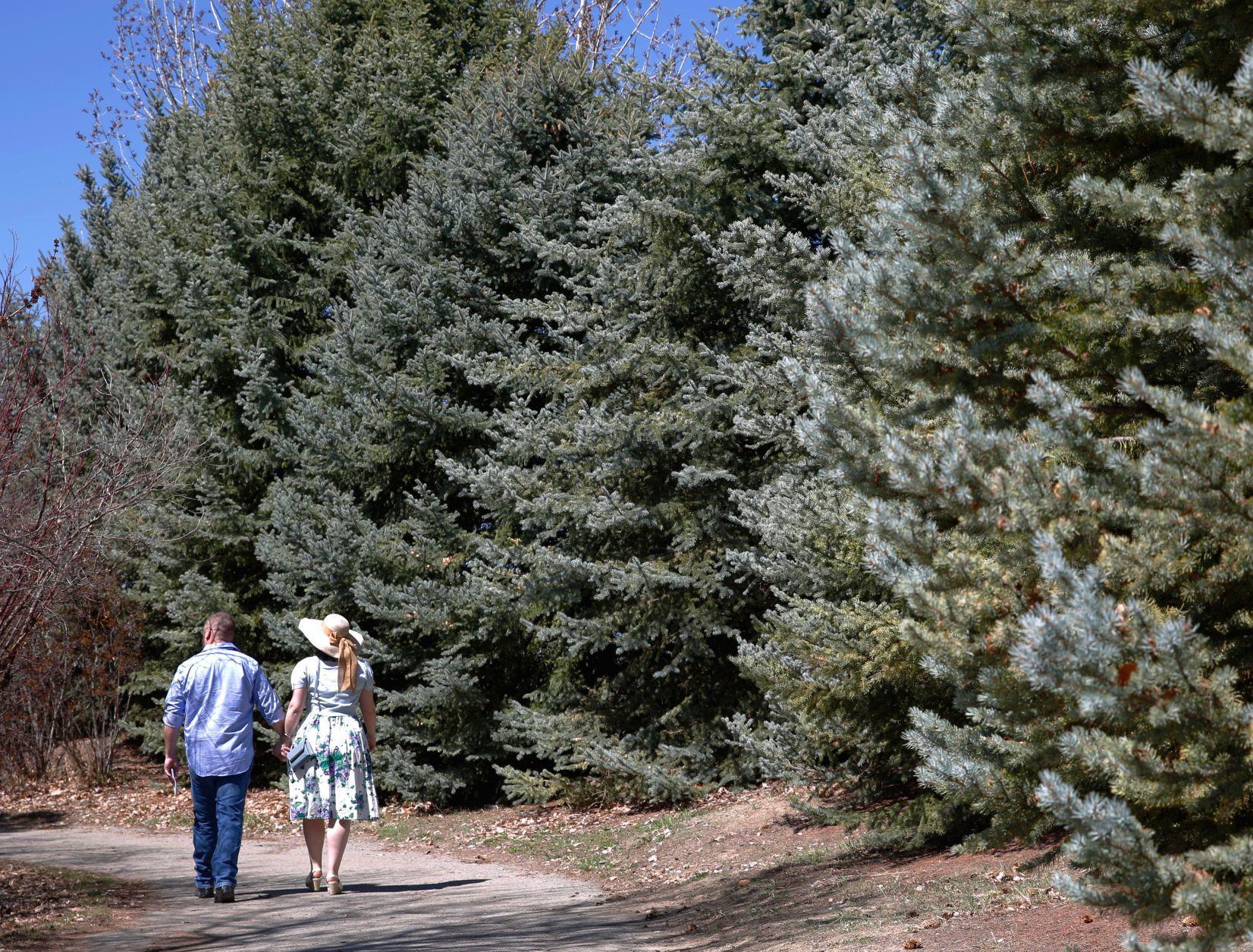 Arboretum dedicated at ZooMontana | Billings Gazette