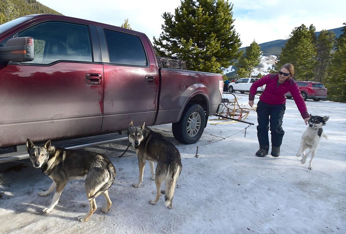 Jen Mignard and sled dogs