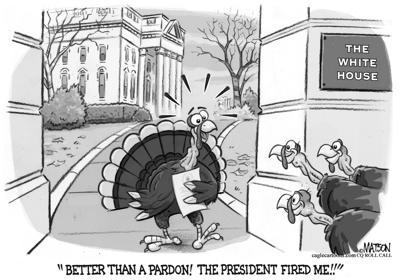 Turkey fired