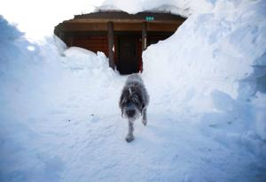 Even in snowy Cooke City, it's been decades since locals have seen it piled this high