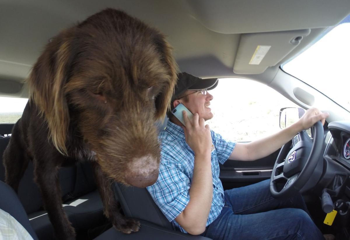 Husker rides shotgun