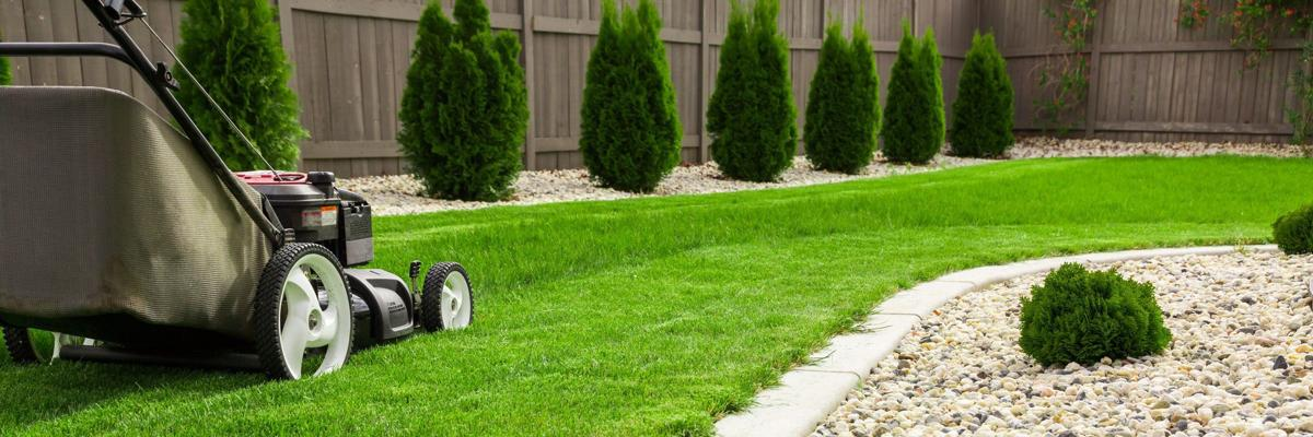Prolong your luscious lawn home and garden for Vip lawn mowing services