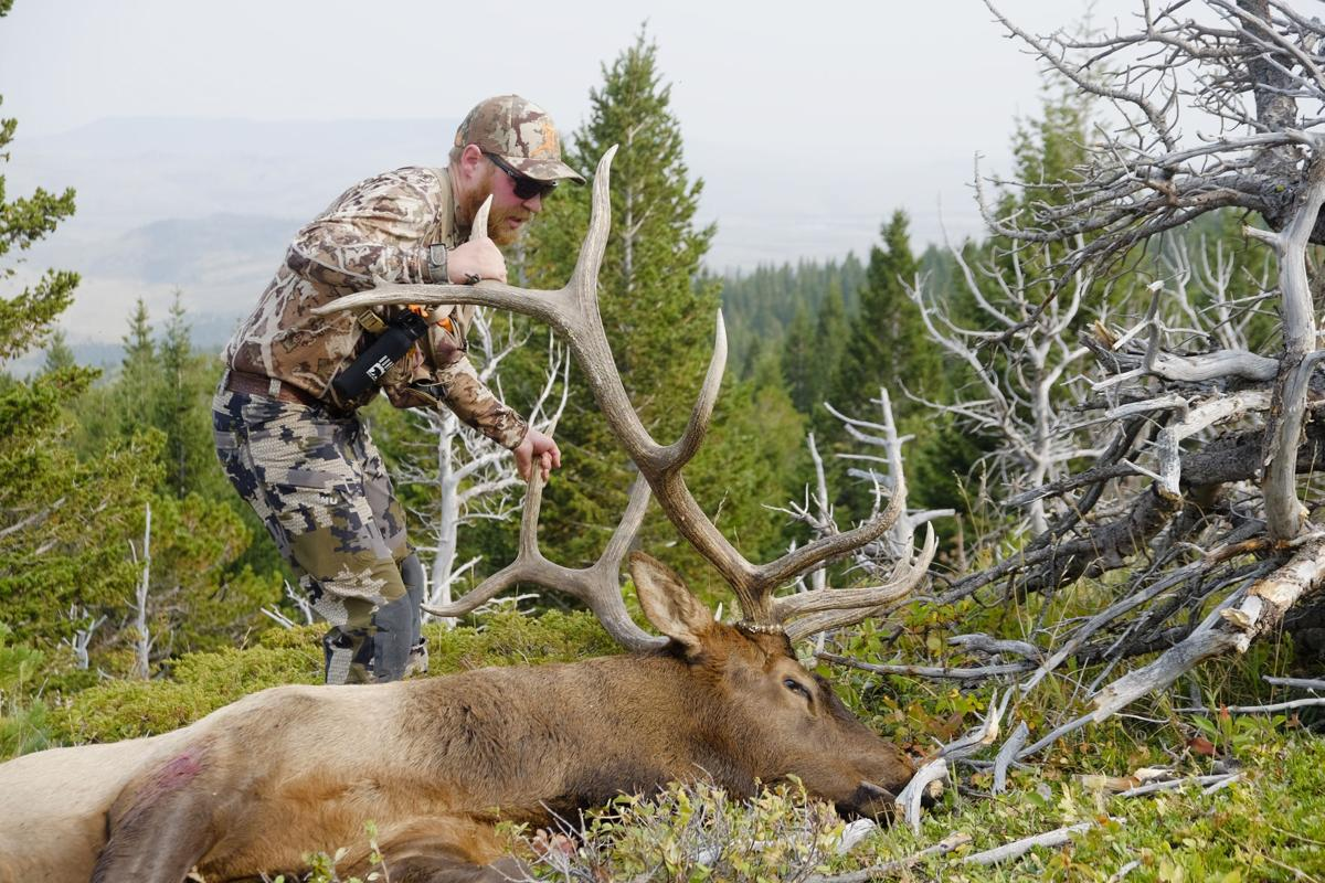 First Archery Bull Elk