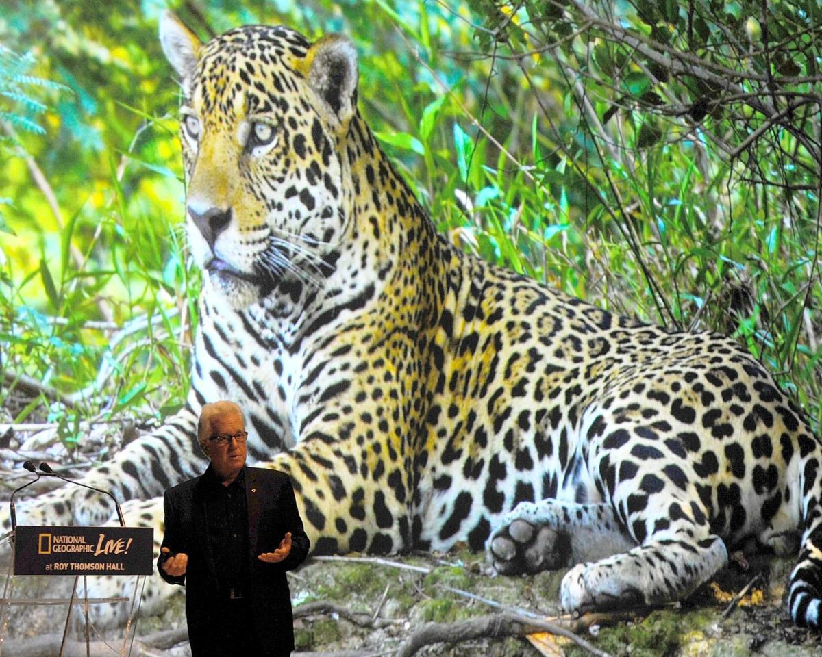 'On the Trail of Big Cats' with Steve Winter