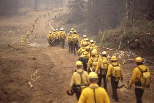 30 years after 1988 Yellowstone fires, large blazes are no longer rare events