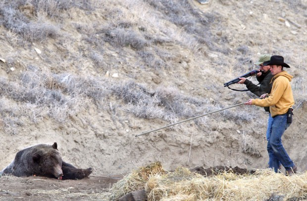 Conflicts increase as game and fish continues to relocate for Wy game and fish
