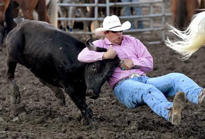 Kyle Callaway wrestles a steer