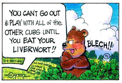 Picky bear