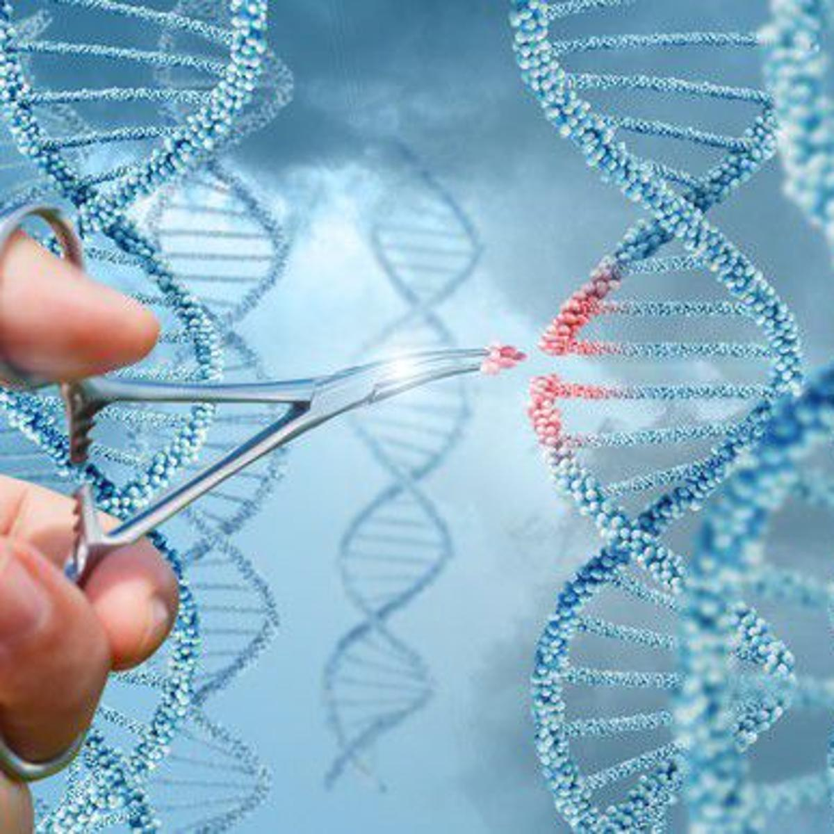 3 Top Biotech Stocks to Buy in March   Markets & Stocks