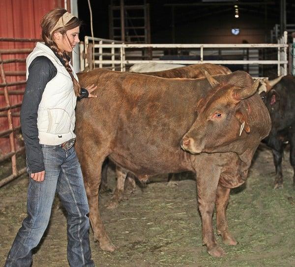 Mesa Pate bucking bull trainer