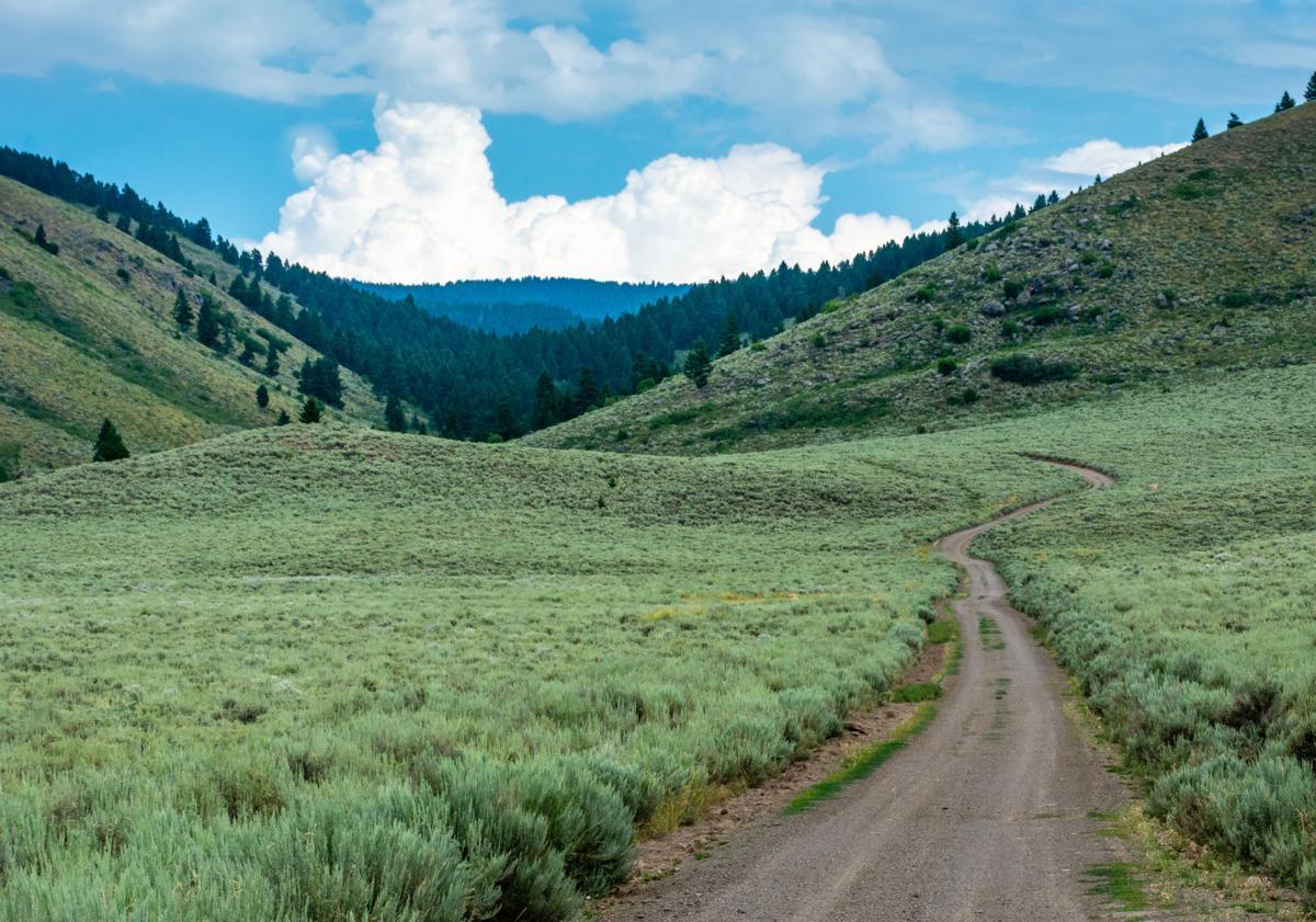 Corral Creek Road