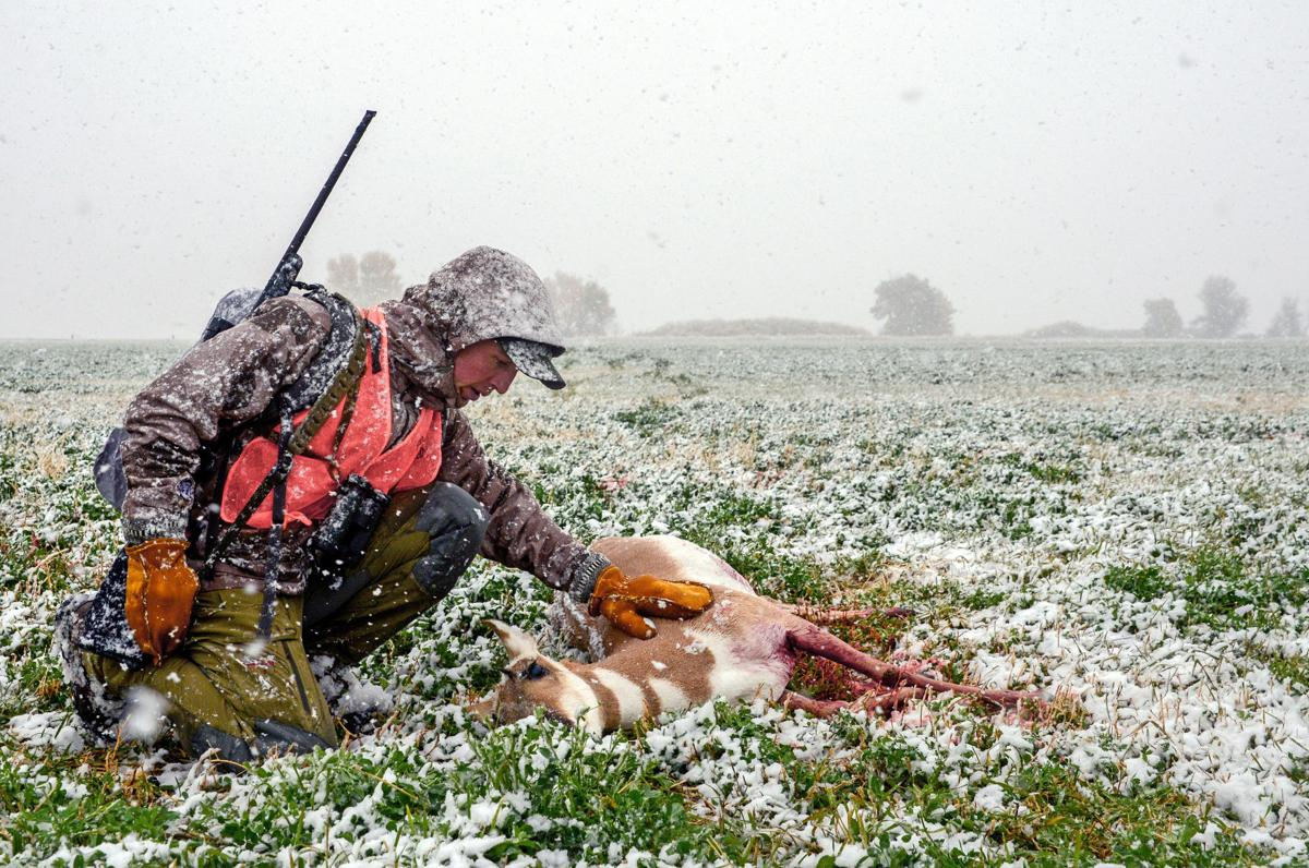 Pronghorn hunt