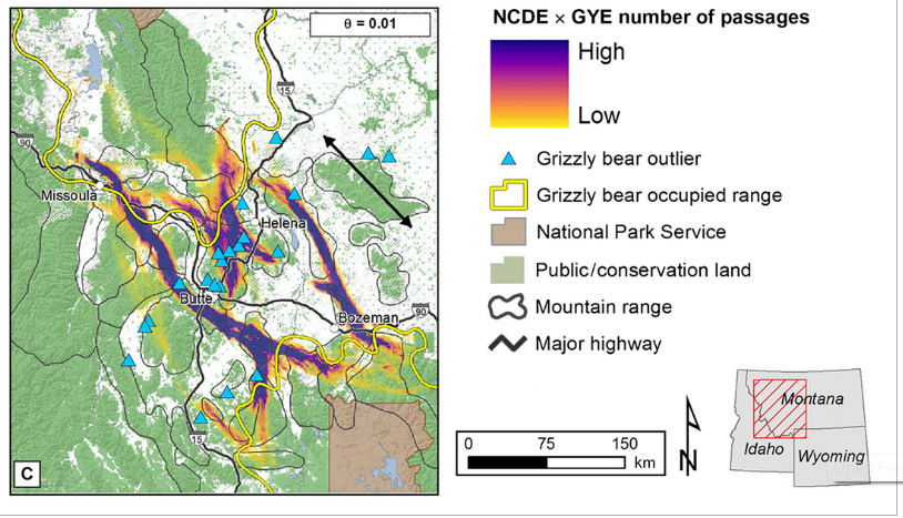 Potential grizzly bear linkage routes