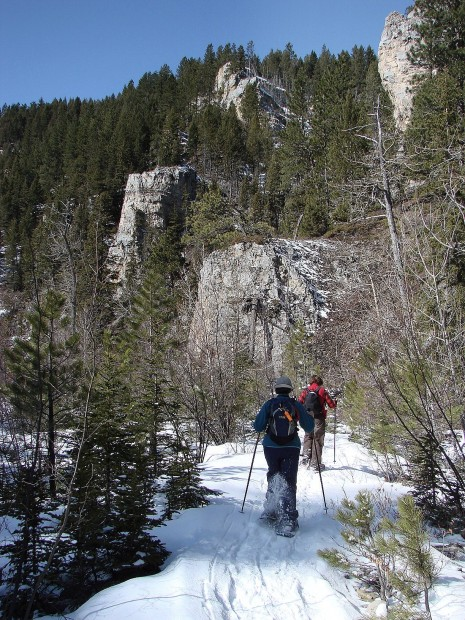 Snowshoe outings