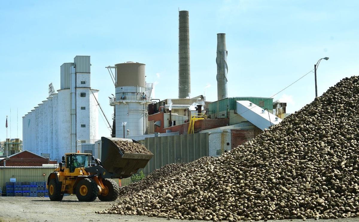 Western Sugar processing