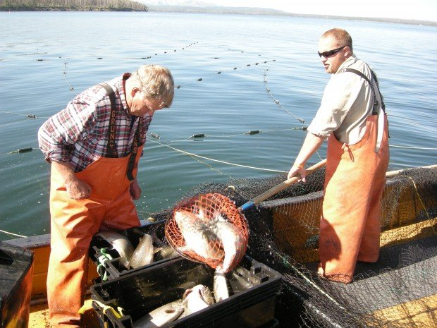 Turning the scales on lake trout: Removal effort gains