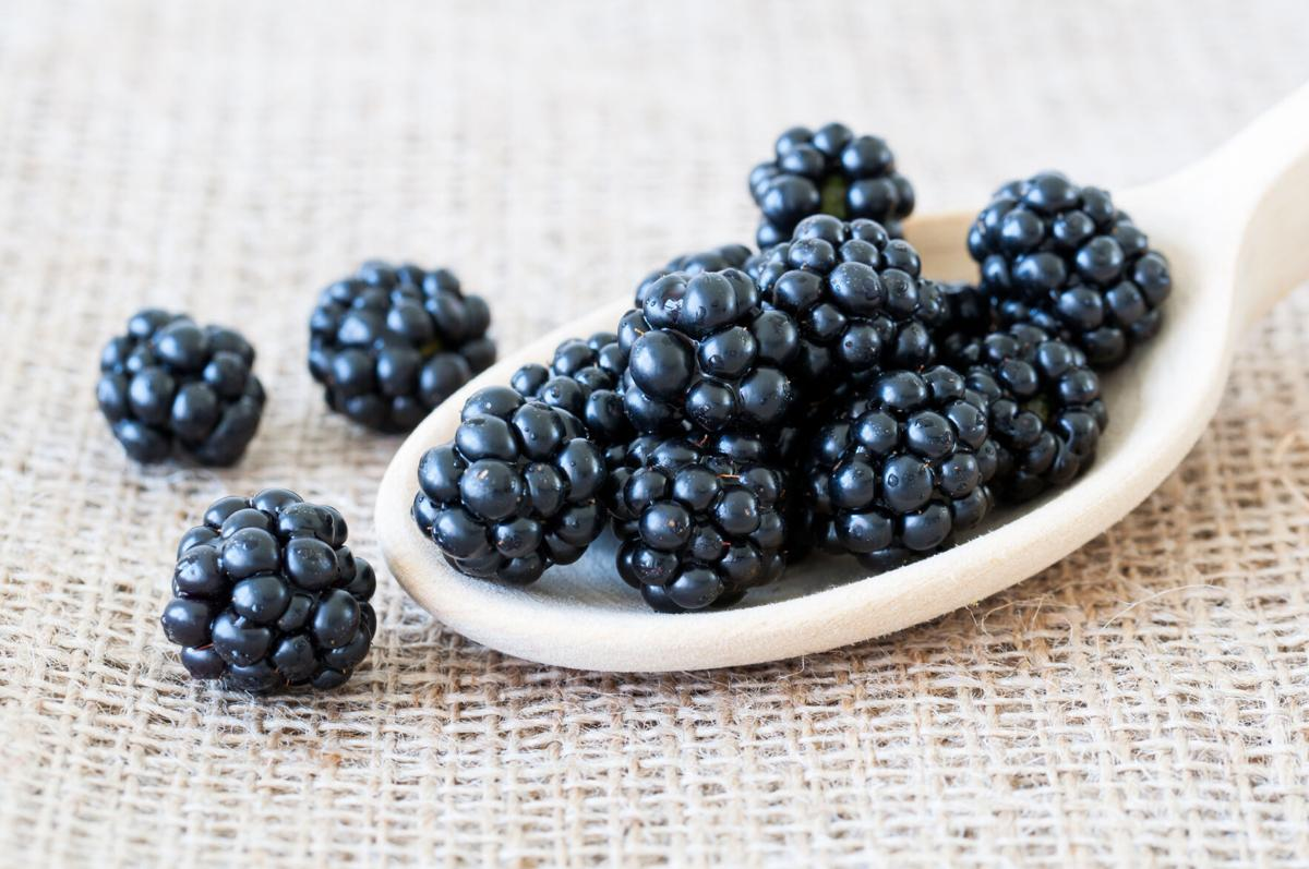 health-blackberries-20200603