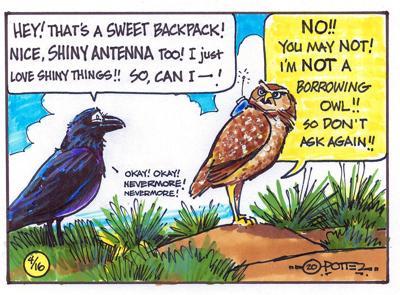 Burrowing, not borrowing, owl