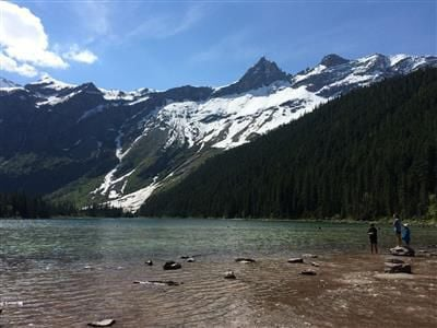 Grizzly bears converge on Avalanche Lake, trigger trail closure in Glacier Park