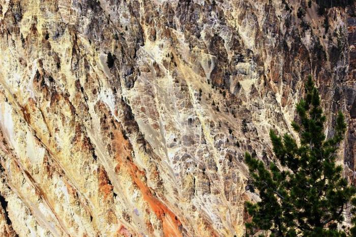 Alterations to go! Hydrothermal alteration in Yellowstone