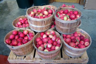 Ross Orchards