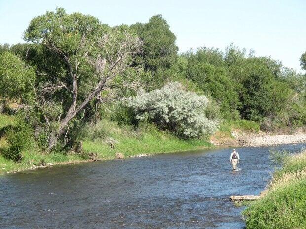 Shields River