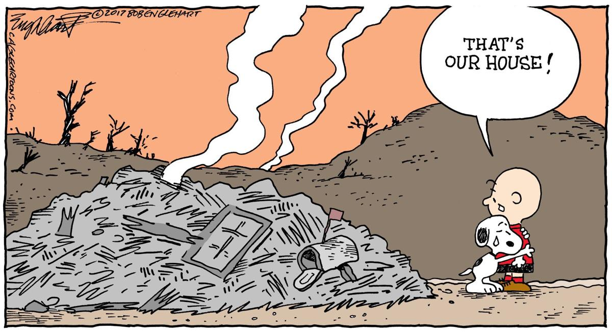 wildfire disaster
