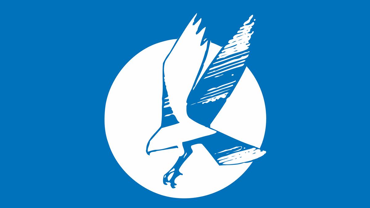 Billings Skyview Falcons logo