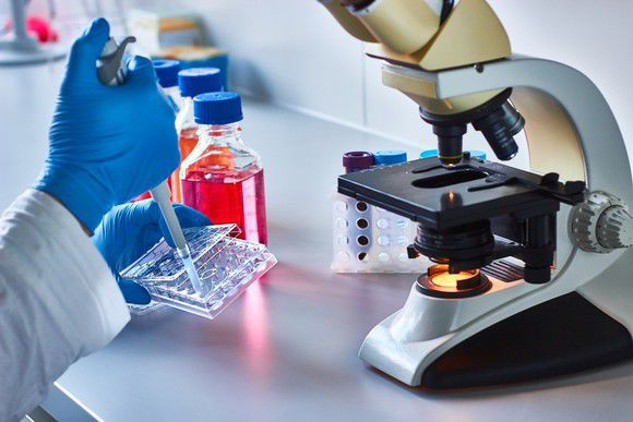 Why Endocyte Stock Is on the Move Today