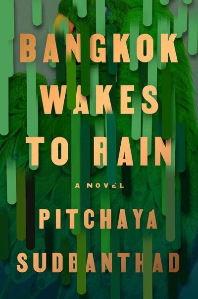 """""""Bangkok Wakes to Rain"""" by Pitchaya Sudbanthad"""